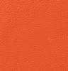 Classic Carrot Orange
