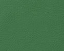 Classic Evergreen Leather